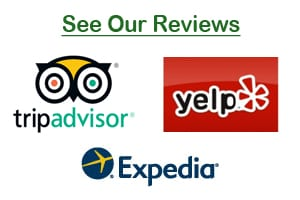 Read Our Reviews • Click Here